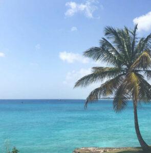 Noleggio auto economico in Barbados